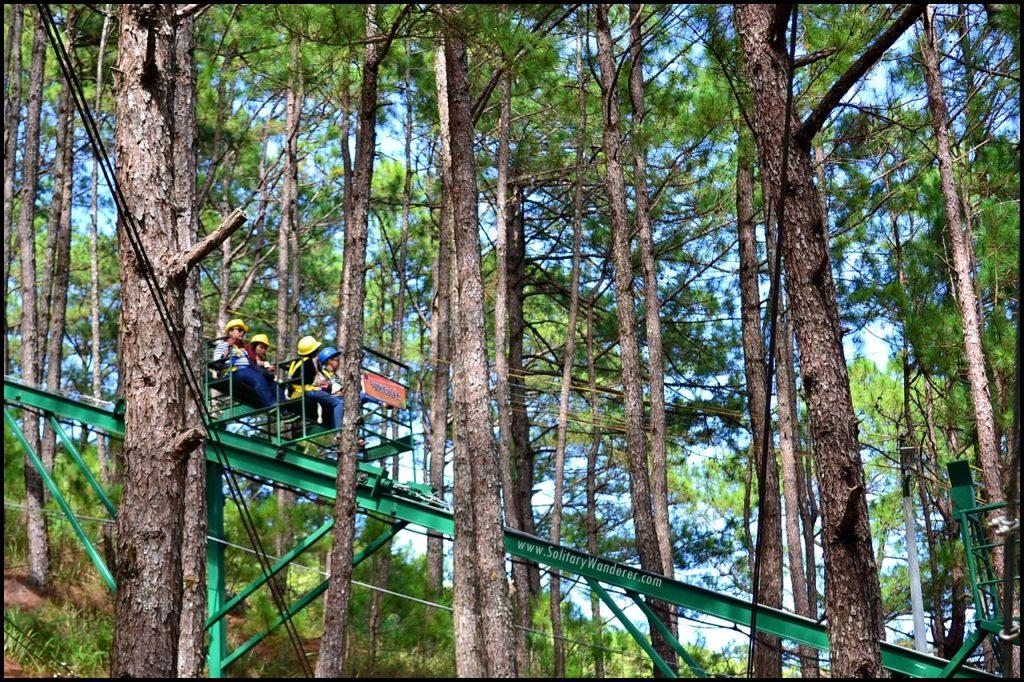 Baguio's Treetop Adventures.