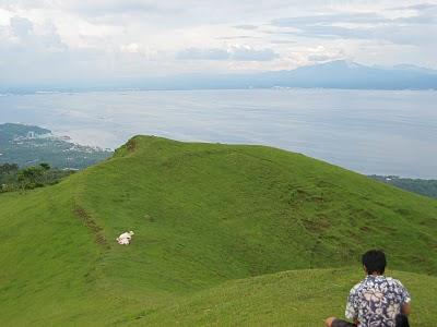 Mt Gulugod Baboy, Batangas