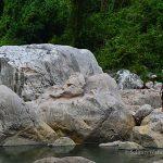 Caving in Wawa Dam, Montalban