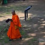 The Modern Thai Monk