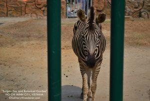 A Day at the Saigon Zoo and Botanical Gardens