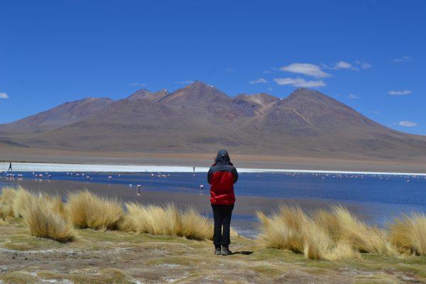 altiplano bolivia