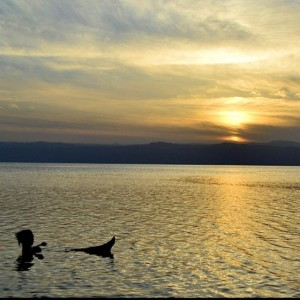 Watching the sunset while floating in the Dead Sea...what's a…