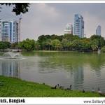 Bangkok's Lumpini Park