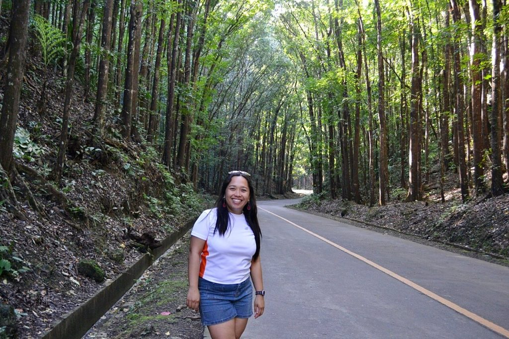 things to do in bohol -- bilar manmade forest