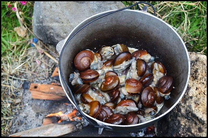 snails batanes