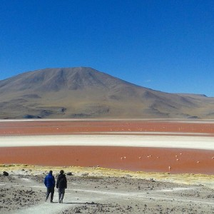 Have you ever seen a bloodred lake? The Laguna Coloradahellip