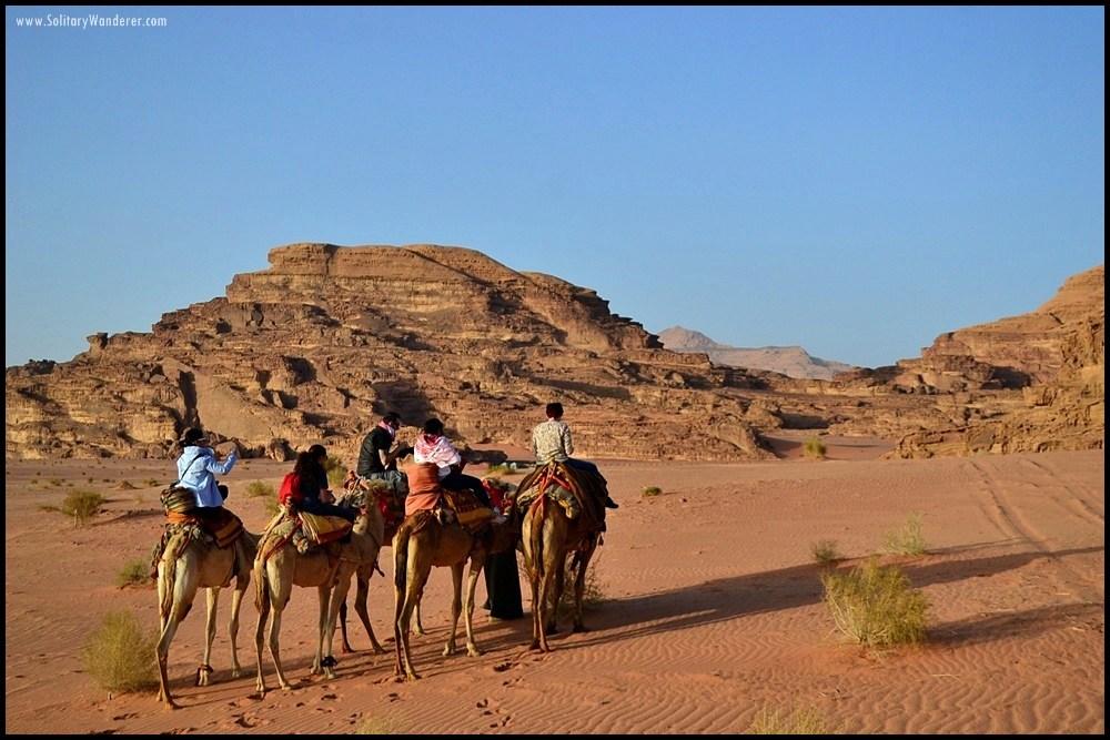 wadi rum jordan camels