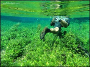 Snorkeling in Brazil: Sustainable Tourism Done Right