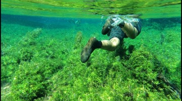 Snorkeling in Bonito: Sustainable Tourism Done Right