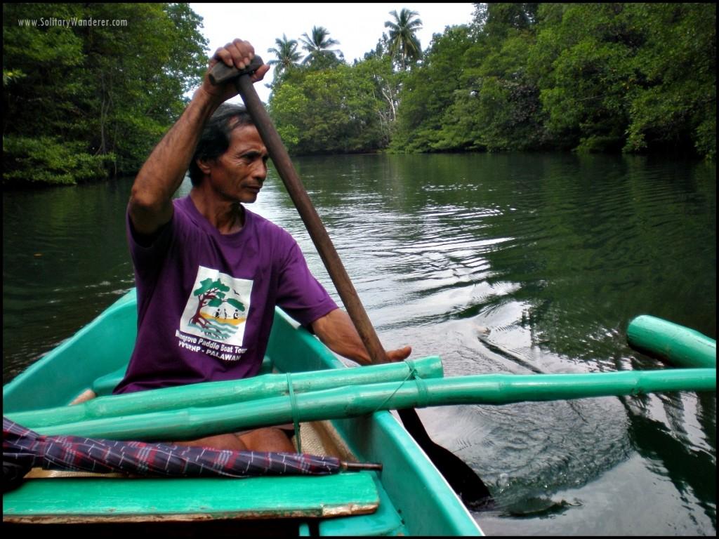 mangrove palawan