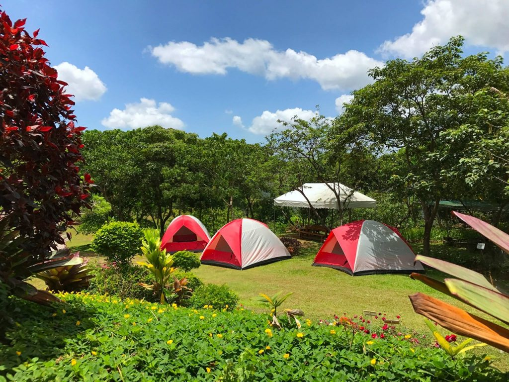 5 Earth-Friendly Things To Do in Haranah Eco-Park