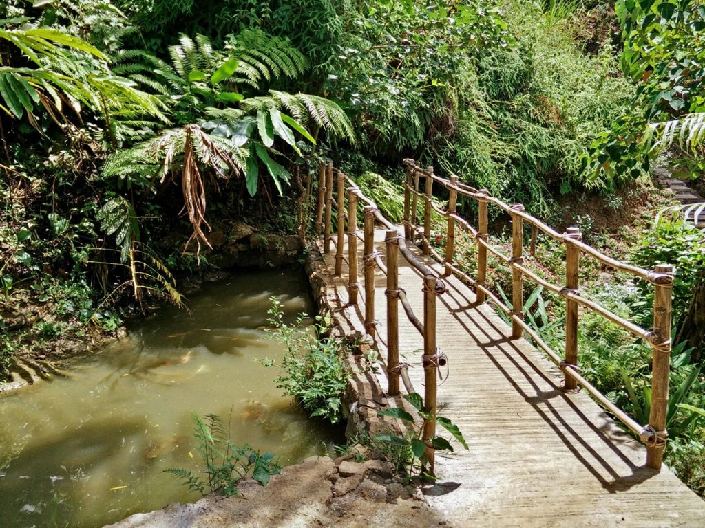 haranah eco-park bridge