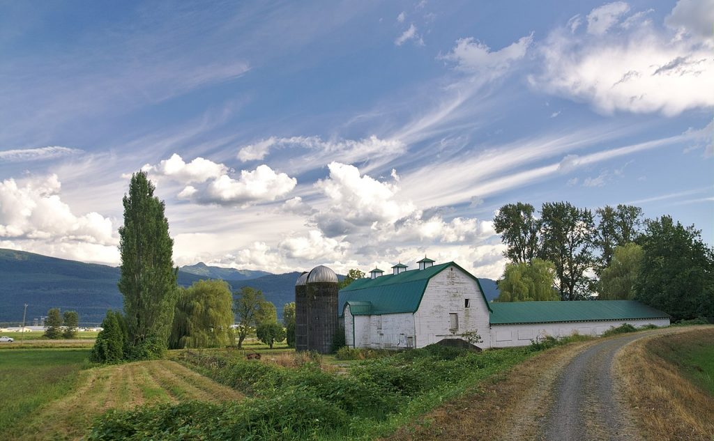 Canada Travel: Experiencing the Art and Museums in Abbotsford BC
