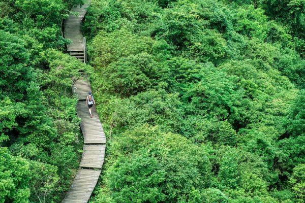 Ngong Ping 360 pathway